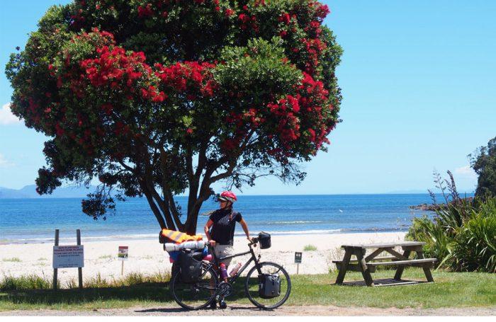 bike_rest