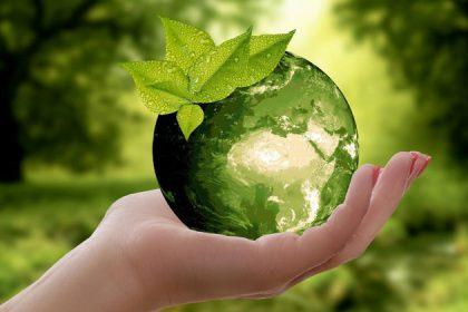 Nachhaltig einkaufen leicht gemacht